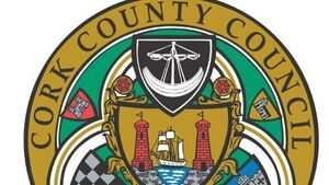 Sheahan to leave county council