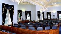 Voters will reject   bid to abolish Seanad: Mara