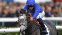 Godolphin confident ahead of Dewhurst bid