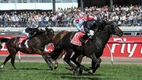 Red Cadeaux second again as Fiorente takes glory
