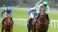 O'Brien declares War for Dewhurst