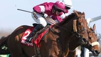 Down Royal date for Lieutenant