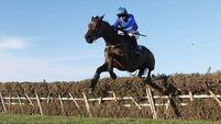 Hurricane Fly 'will strip fitter at Christmas'