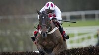 Martin happy with Flemenstar for seasonal debut