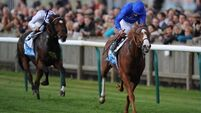 Approach may move back up in trip in Juddmonte