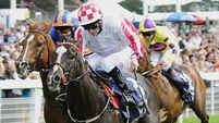 Lethal sprinter out for more glory