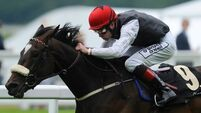 Stack team confident ahead of Pretty Polly bid