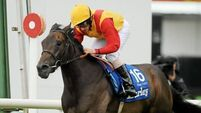 Snow on target for Royal Ascot after Sandown spin