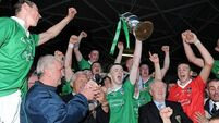 Limerick end 29-year wait for Munster title in style