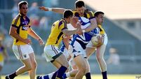 Ulster grit gets Laois on a roll