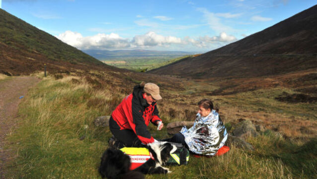 Specialist search dogs find missing psychiatric patient