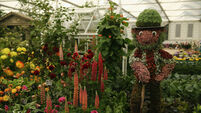 Celebs get preview of Chelsea Flower Show