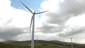 Wind energy eases cost of power