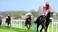 Buck's heads World Hurdle entry