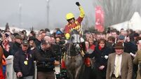 Dynaste swoops to conquer in  Ryanair