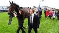 Prognosis good for Cirrus Des Aigles recovery