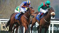 Guineas options for Balansiya