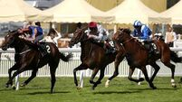Treve set for thorough check-up