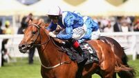 Mustajeeb  gives  Weld 17th Royal Ascot success