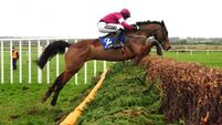 Uncompetitive national hunt racing proving a real turn-off for punters