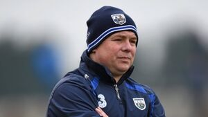 Devastating injury blows for Déise hurlers