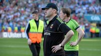 Horan  says refs should now be semi-pro