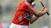 Young Rebels determined to make an impact, says O'Sullivan
