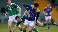 Limerick display pleases Brudair
