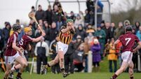 Shefflin 'mad for hurling'