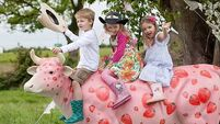 Deadline fast approaching for Cork Summer Show exhibitors