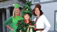 Festive Fota fills up with fun for the miracle kids