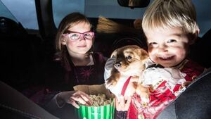 Bring your pet to the movies to raise vital welfare funds<