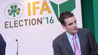 New IFA president, Joe Healy, pledges openness