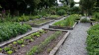 The green-fingered mile: gardening to sow seeds of jail rehab