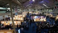 Brains, graft, passion and Irish charm - Web Summit
