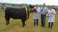 Clonakilty celebrates with jiving at the agricultural show