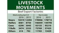 Beef market report: Tighter supply and late grass boost price outlook