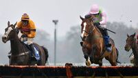 Christmas Hurdle next for Faugheen