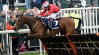 Twiston-Davies' stable star ready for Haydock Rush
