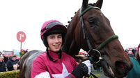 Workmanlike Very Wood makes solid start to his chasing career