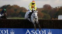 Al Ferof  on course for King George after returning with a bang