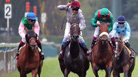 Superb Treve again the leading lady in Arc romp