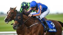 Bracelet proves the perfect fit for Oaks