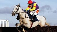 Top staying hurdler Grands Crus retired