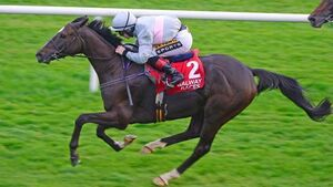 Trip will suit Clondaw Warrior in Cesarewitch