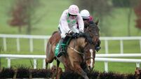 Long faces if Faugheen fails to collect