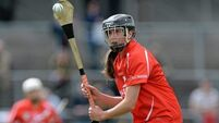 Red-hot Cotter insists cool heads key to Cork progress