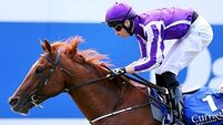 No reason to oppose Australia in Champion Stakes