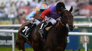 Estimate fills Stoute's cup of joy