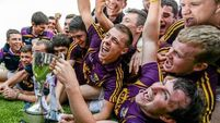 McDonald goal puts  seal on Wexford win